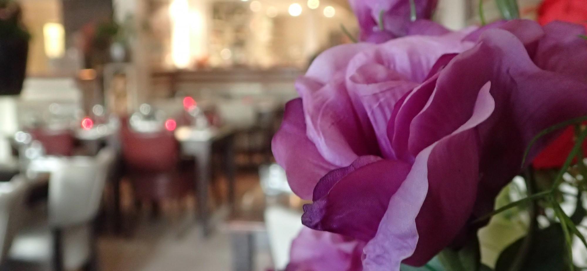 flower italiaans